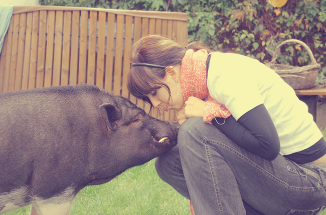 Minischwein Sammi und ich