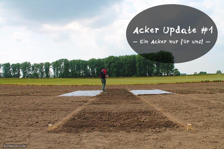So, wir haben nun nen Acker ~ Acker Update #1 (mit Video whoop whoop!)