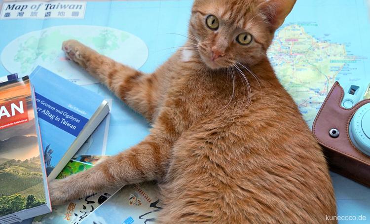 Reiseplanung Taiwan mit Katze