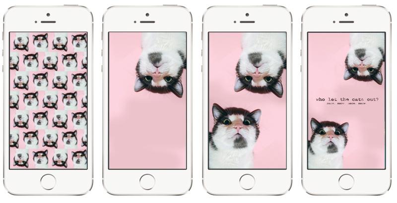 KuneCoco • Freitagsfavoriten Oktober 2016 • Smartphonehintergrüne