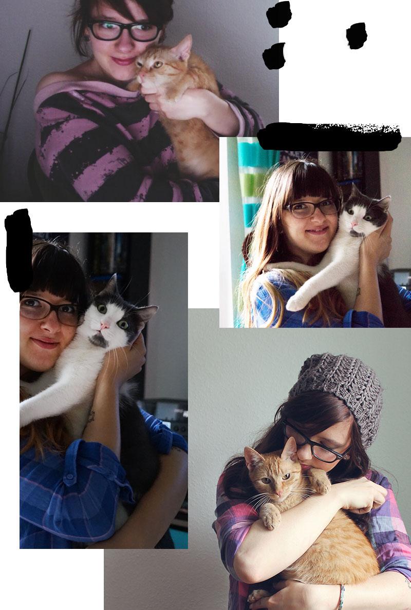 Gemeinsame Katzenfotos