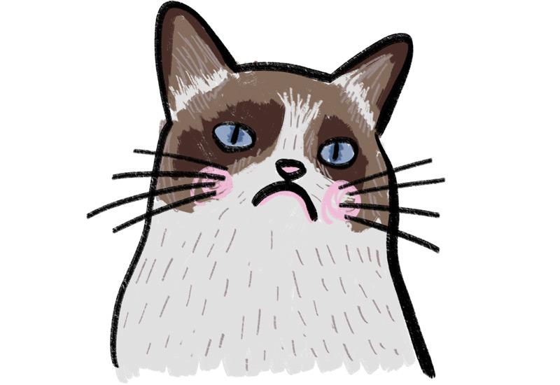 KuneCoco • Katzen Memes • Grumpy Cat