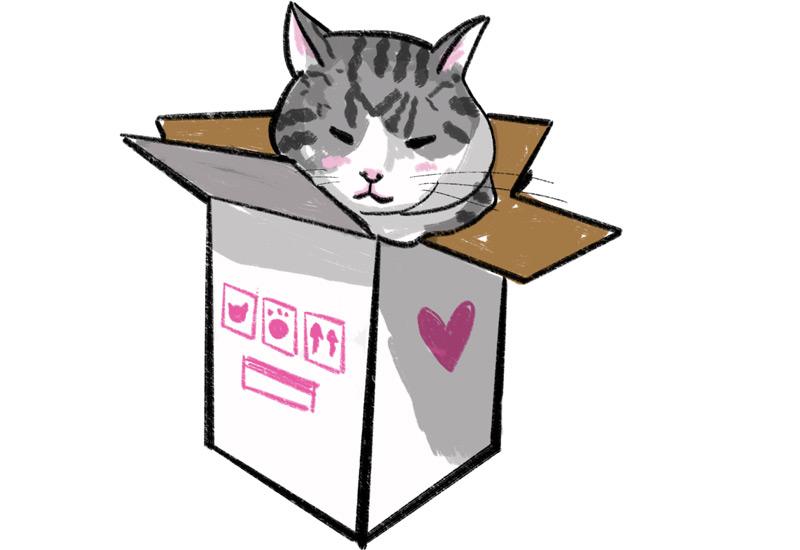 KuneCoco • Katzen Memes • Maru