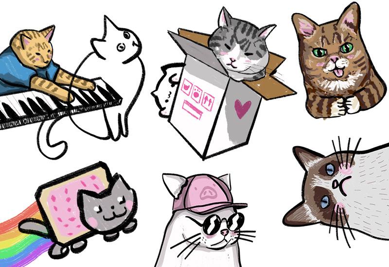 Katzen, Memes und das Internet