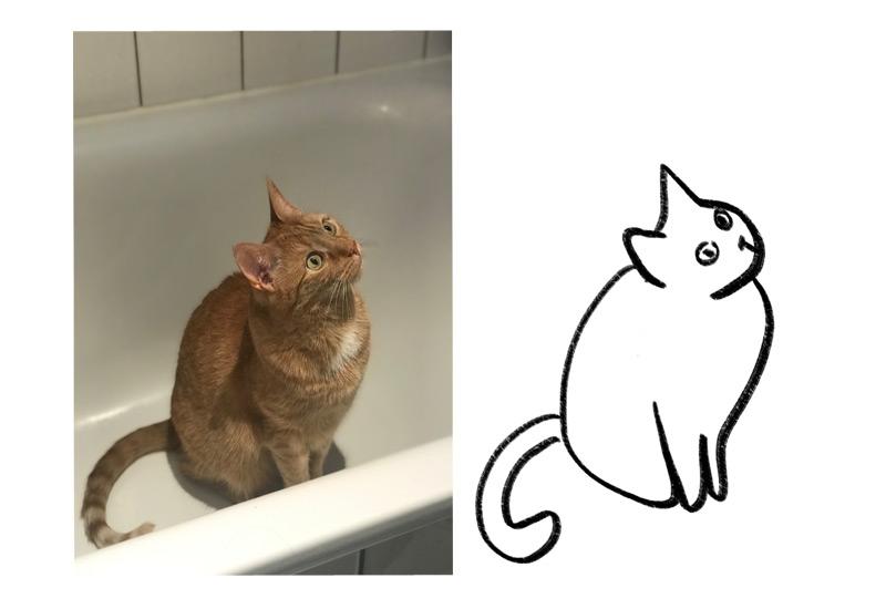 KuneCoco • Katzen Memes • Poorly drawn Gimli