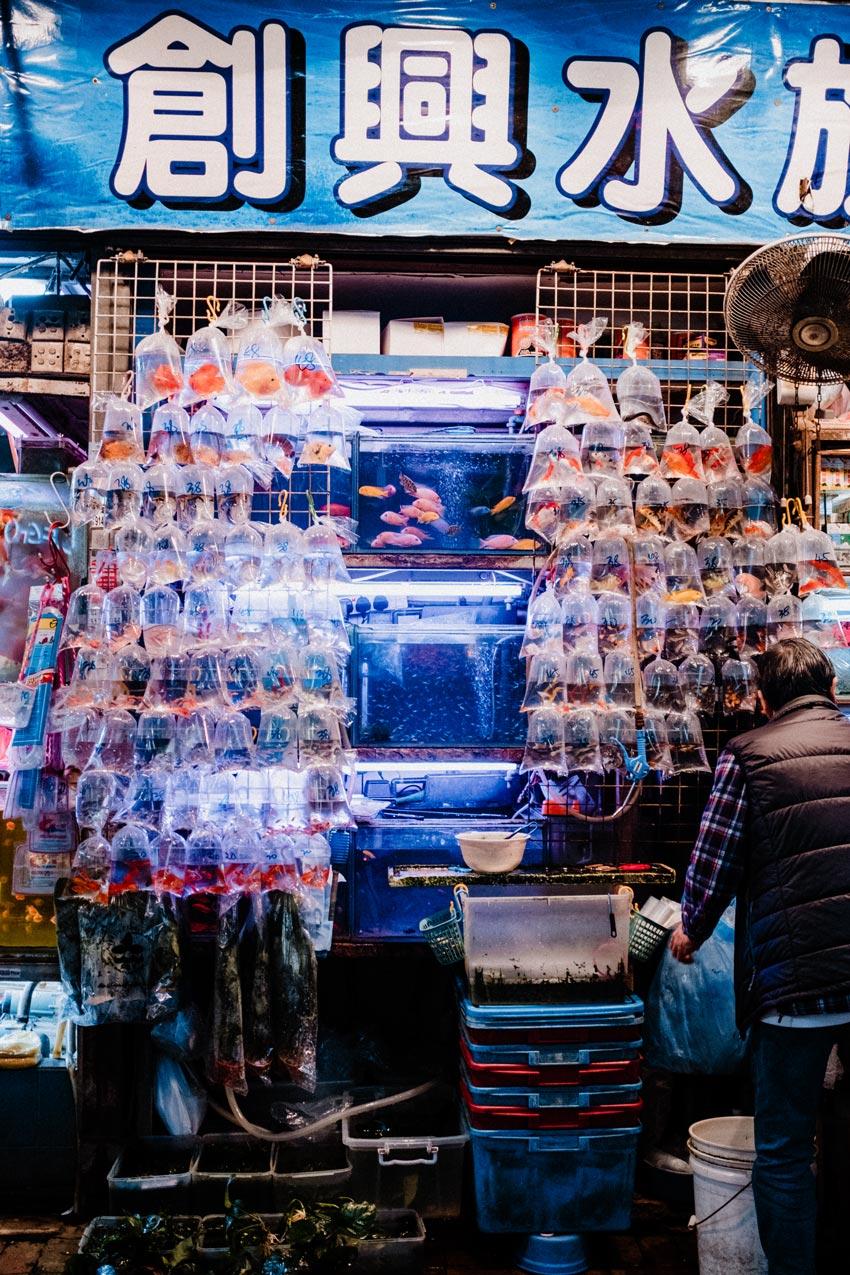 (Kuriose) Märkte in Hongkong