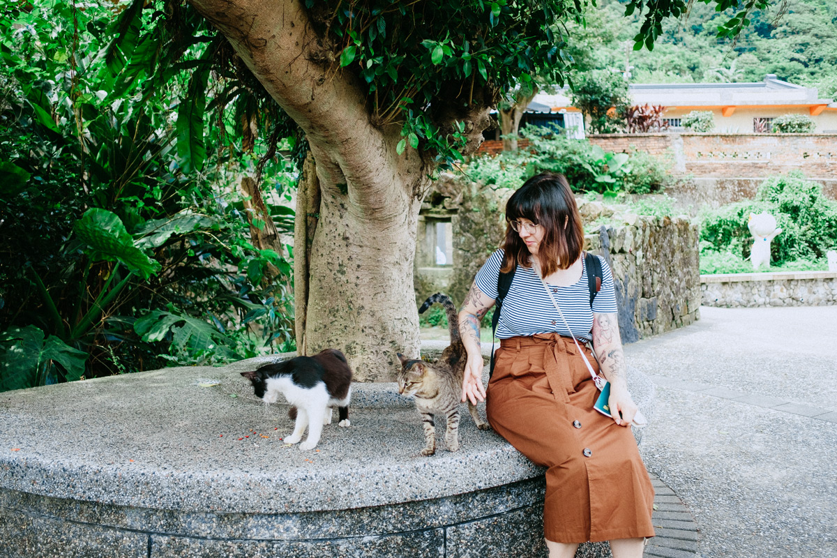 Houtong Cat Village • Katzenstadt in Taiwan
